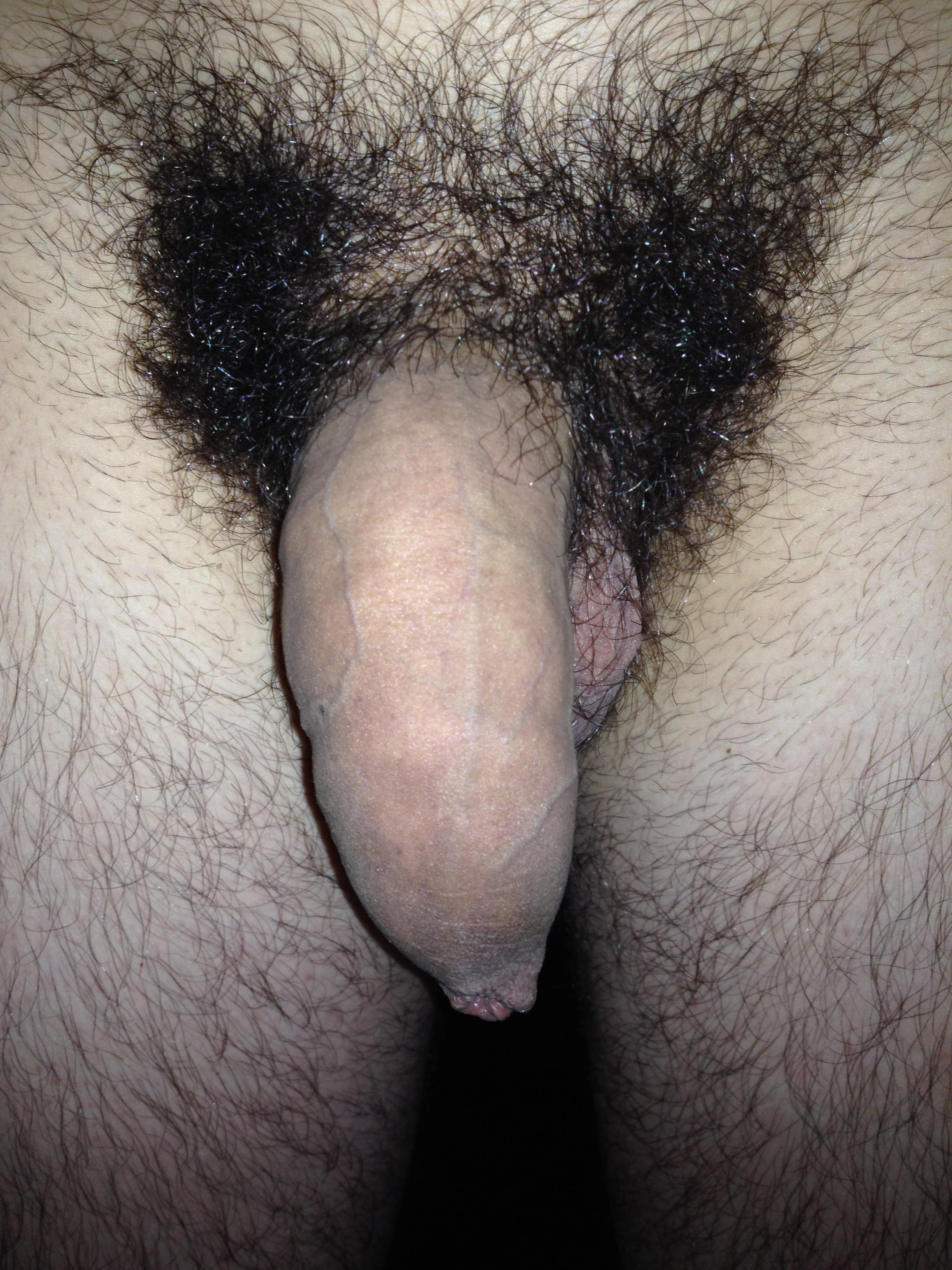 Large Hairy Dick