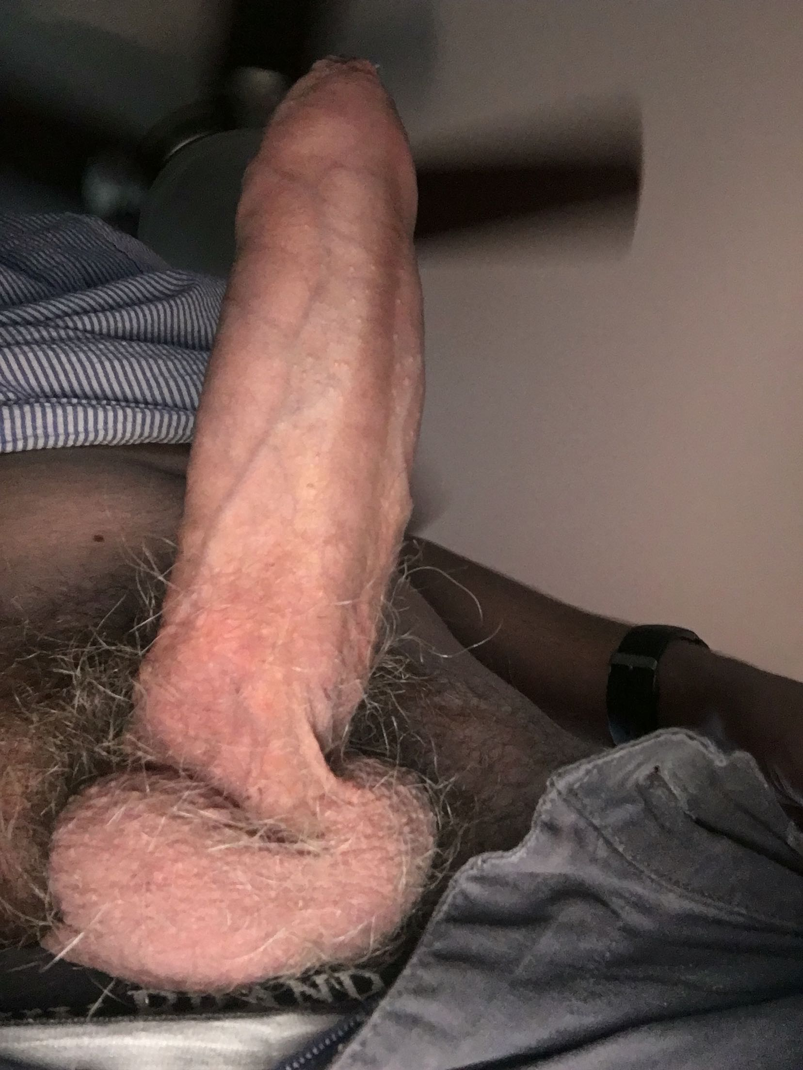 Dutch men cocks 2