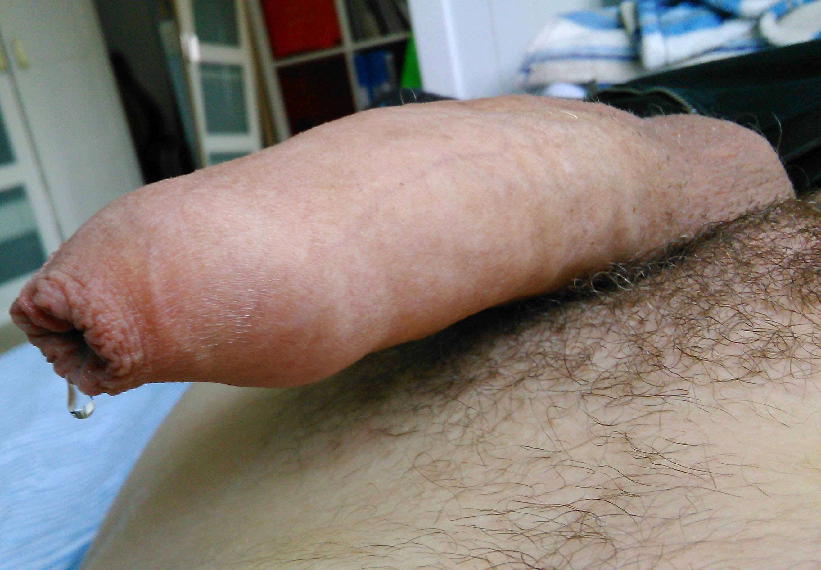Hard cock and balls precum
