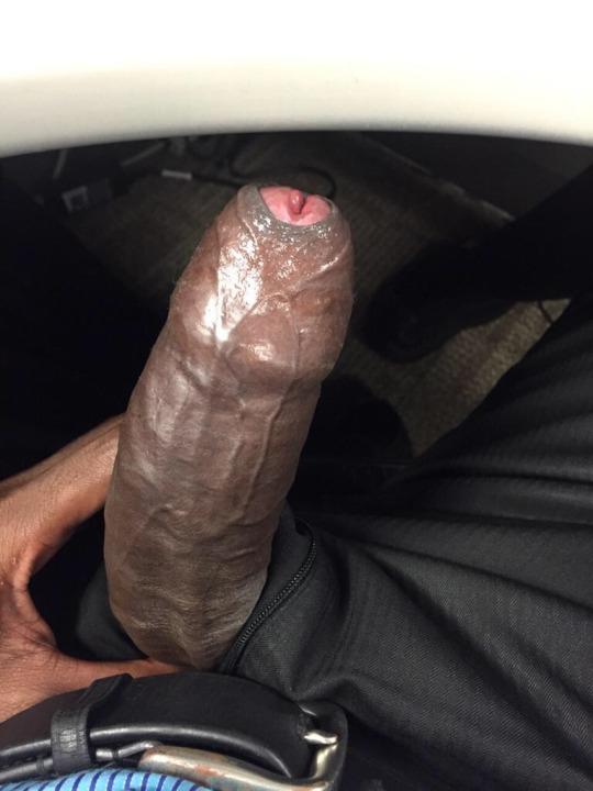 Dark thick uncut cock