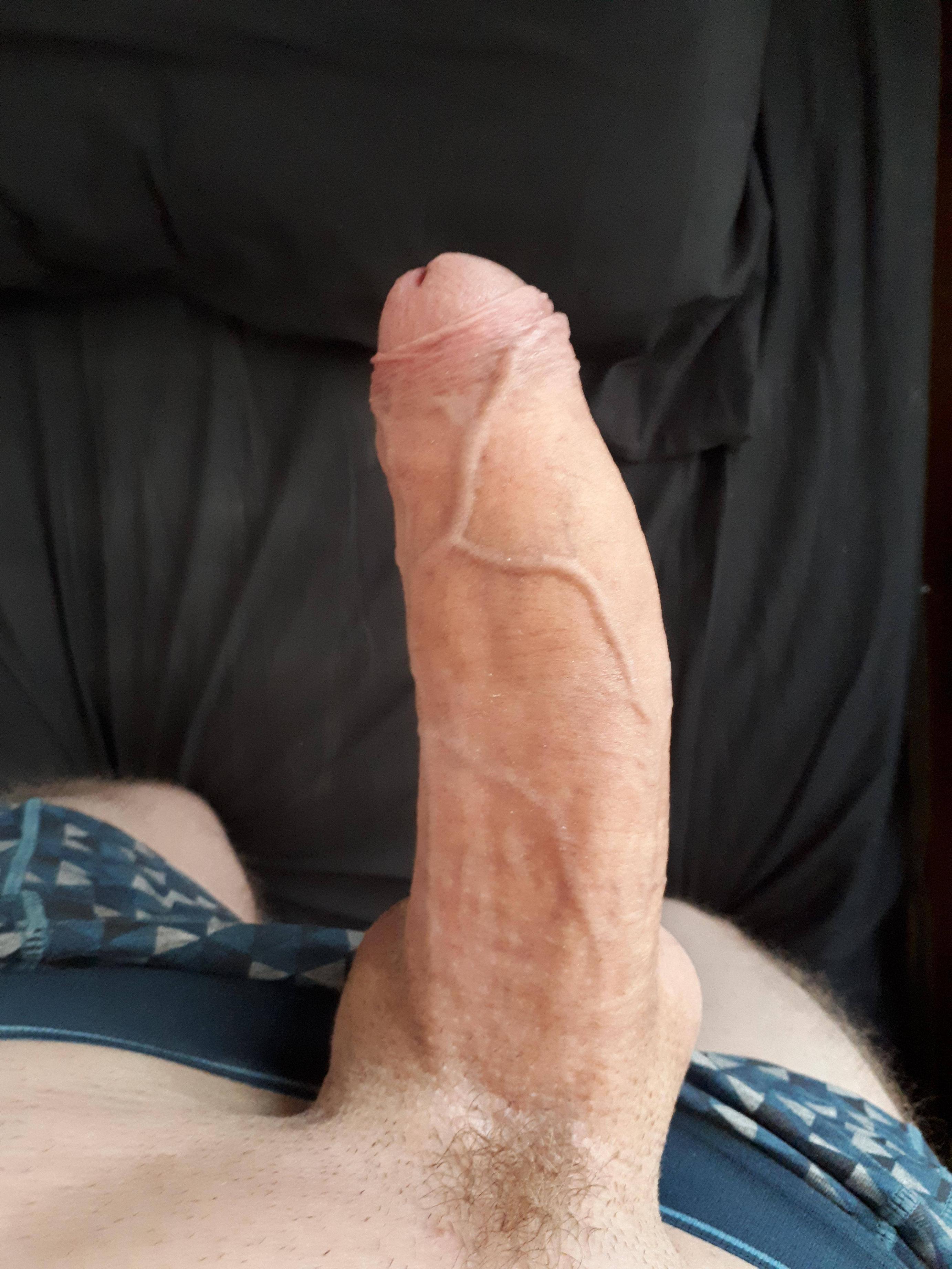 Huge beast