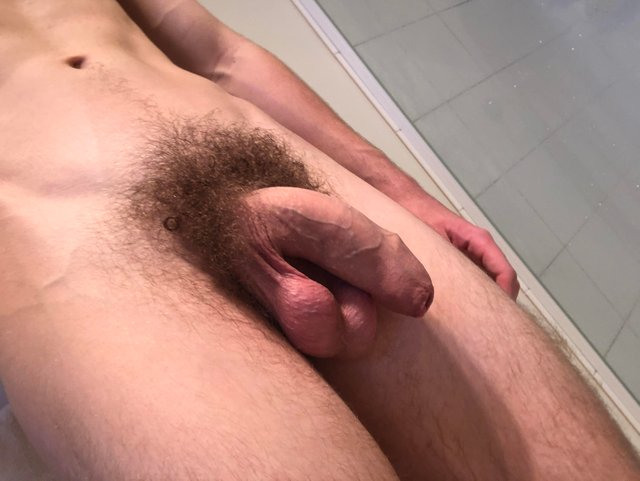 Fully hard hairy cut penis